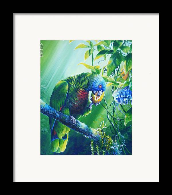 Chris Cox Framed Print featuring the painting St. Lucia Parrot And Wild Passionfruit by Christopher Cox
