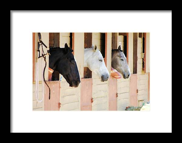 Horse Framed Print featuring the photograph Stable Series by Ellen Lerner ODonnell