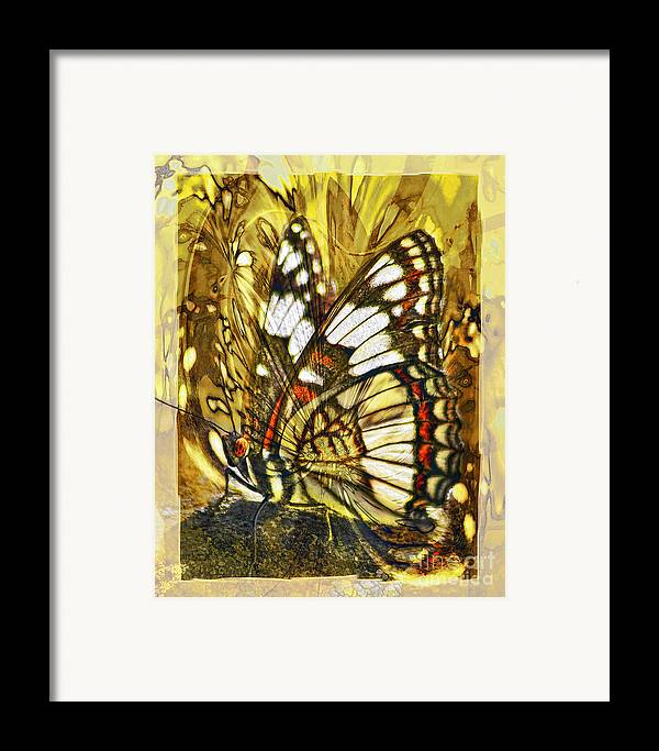 Butterfly Framed Print featuring the digital art Stained Glass Butterfly by Chuck Brittenham