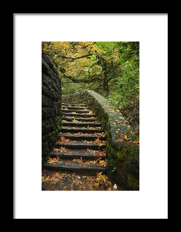 Fall Framed Print featuring the photograph Stairway To Fall by Lori Mellen-Pagliaro