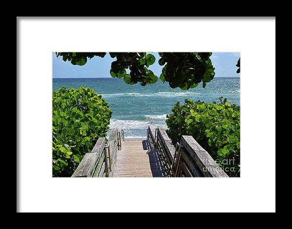 Wooden Steps Framed Print featuring the photograph Stairway To Haven by William Tasker