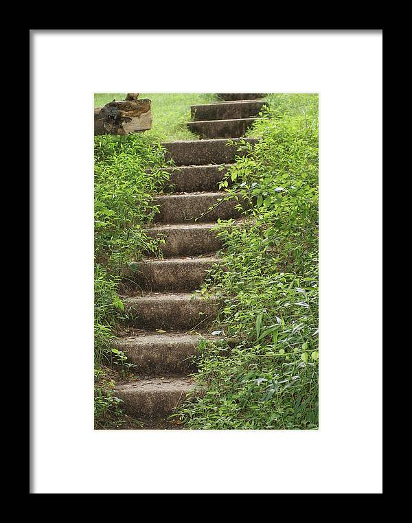 Nature Framed Print featuring the photograph Stairway To Heaven by Heather Green