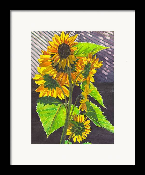 Sunflowers Framed Print featuring the painting Stalk Of Sunflowers by Catherine G McElroy