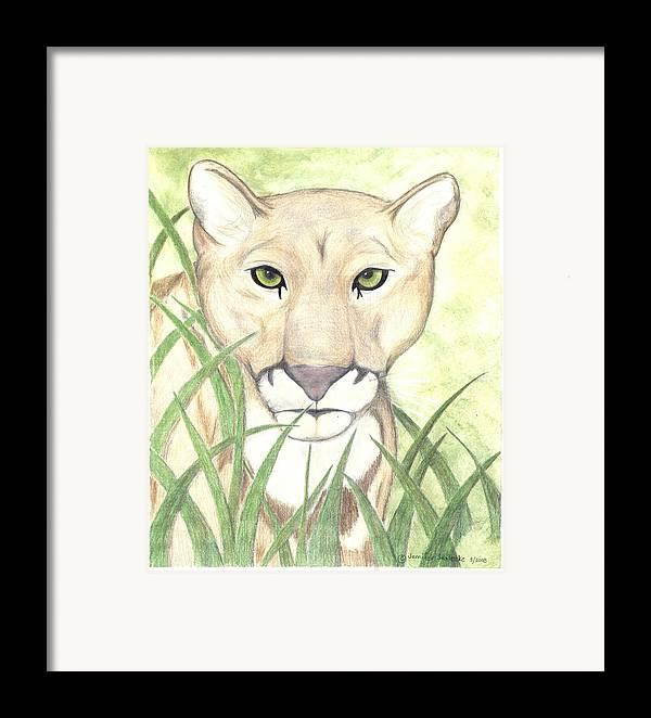Mountain Lion Framed Print featuring the drawing Stalker by Jennifer Skalecke