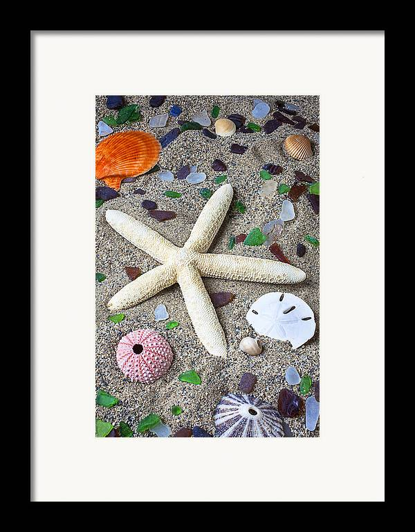 White Framed Print featuring the photograph Starfish Beach Still Life by Garry Gay