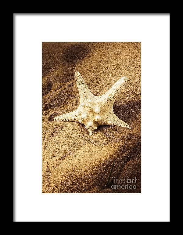 Nautical Framed Print featuring the photograph Starfish In Sand by Jorgo Photography - Wall Art Gallery
