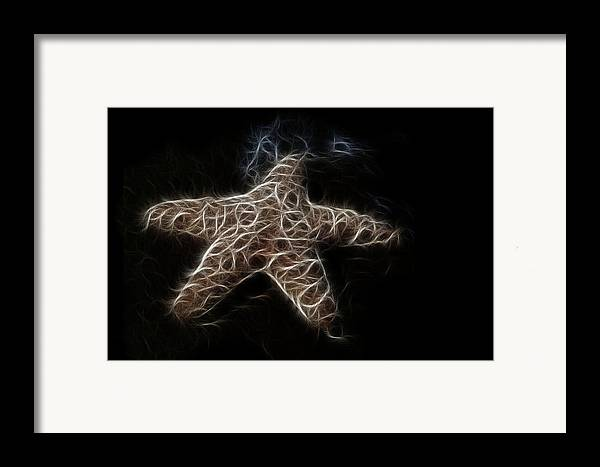 Starfish Framed Print featuring the digital art Starfish by Tilly Williams