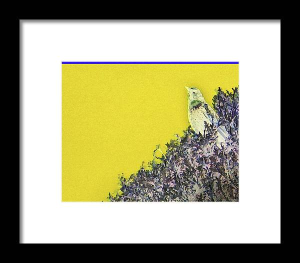 Abstract Framed Print featuring the photograph Starling Surprise by Lenore Senior