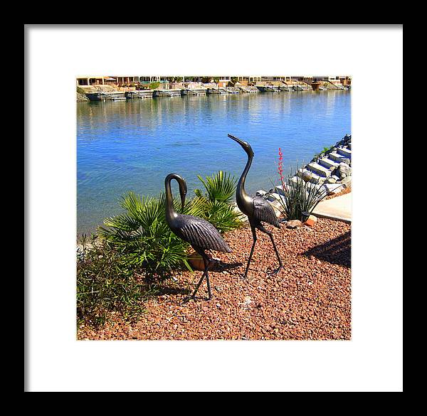 Cranes Framed Print featuring the photograph Statueque Cranes by Lessandra Grimley