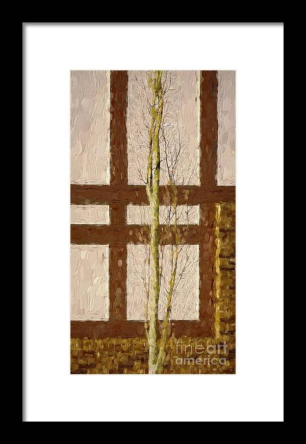 ea21278acb29 Tree Framed Print featuring the photograph Staying Between The Lines by Bob  Lentz