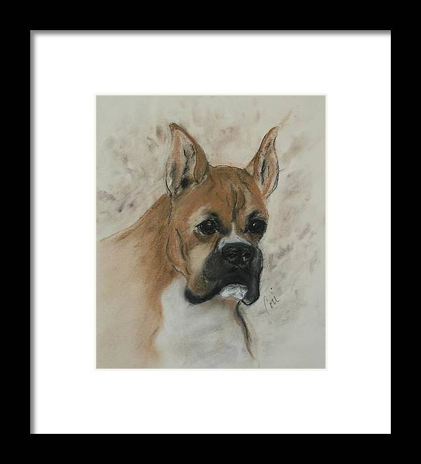 Dog Framed Print featuring the drawing Steady Goes It by Cori Solomon
