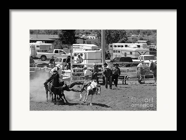 Rodeo Framed Print featuring the photograph Steer Wrestling by Susan Chandler