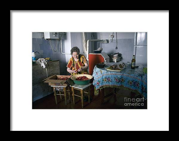 Ukraine Framed Print featuring the photograph Stefania Cleans Strawberries In Chortkiw Ukraine by Yuri Lev