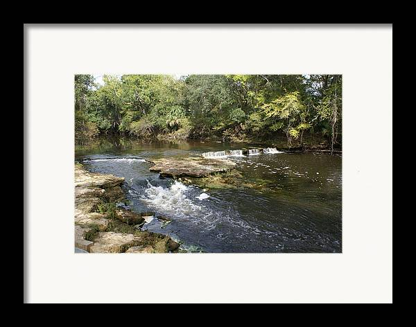 Steinhatchee Framed Print featuring the painting Steinhatchee Falls by Debbie May