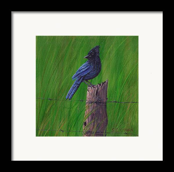 Landscape Framed Print featuring the painting Stellar's Jay by SueEllen Cowan