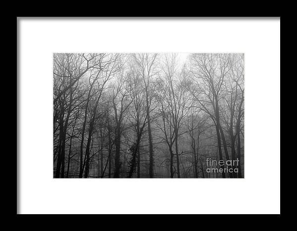 Black Framed Print featuring the photograph Stepping Out by Cj Mainor