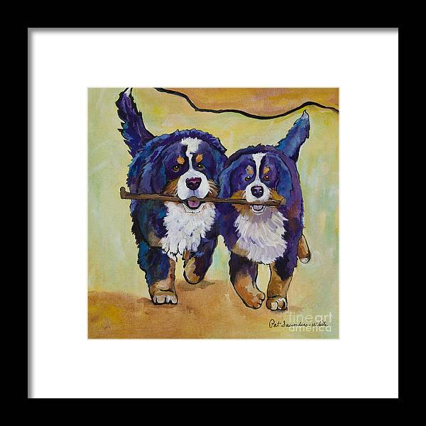 Bernese Mountain Dogs Framed Print featuring the painting Stick Together by Pat Saunders-White