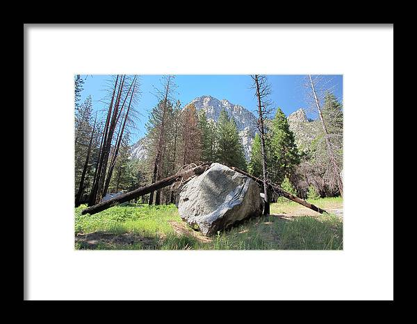 Kings Canyon National Park Framed Print featuring the photograph Sticks And Rock by Rick Pham