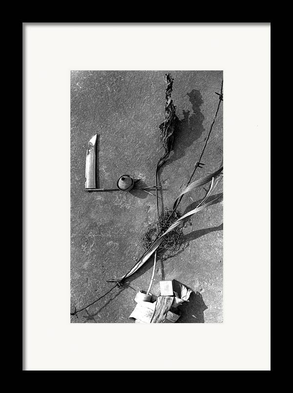 Still Life Framed Print featuring the photograph Still Forms by Ted M Tubbs
