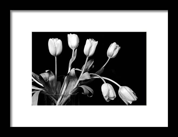 Flowers Framed Print featuring the photograph Still Life With Tulips by Cathy Dixson