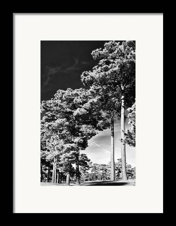 Nature Framed Print featuring the photograph Stillness by Gerlinde Keating - Galleria GK Keating Associates Inc
