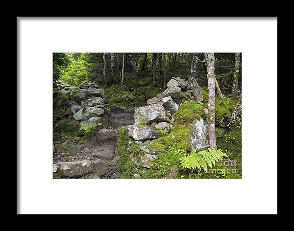 Stonewall Framed Print featuring the photograph Stone Gate - Edmands Path - White Mountains New Hampshire by Erin Paul Donovan
