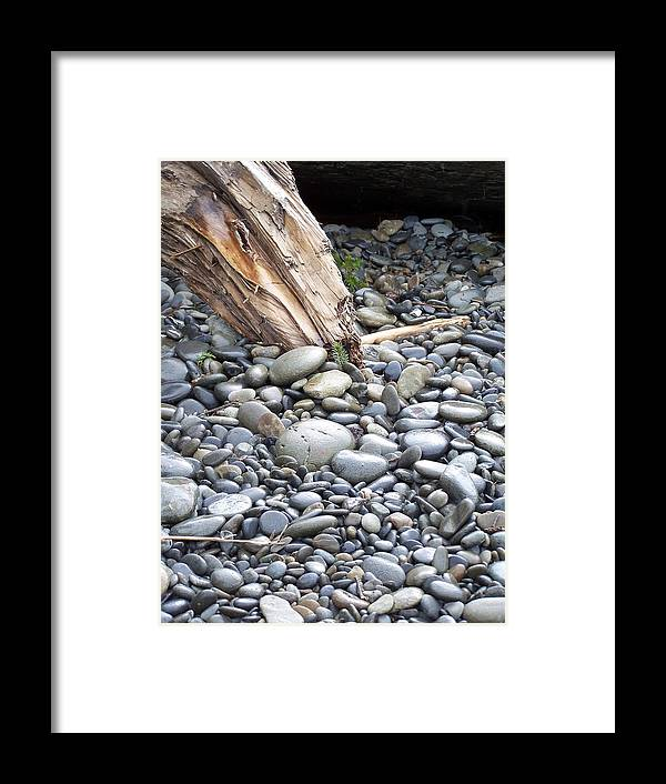 Stones Framed Print featuring the photograph Stones by Gene Ritchhart