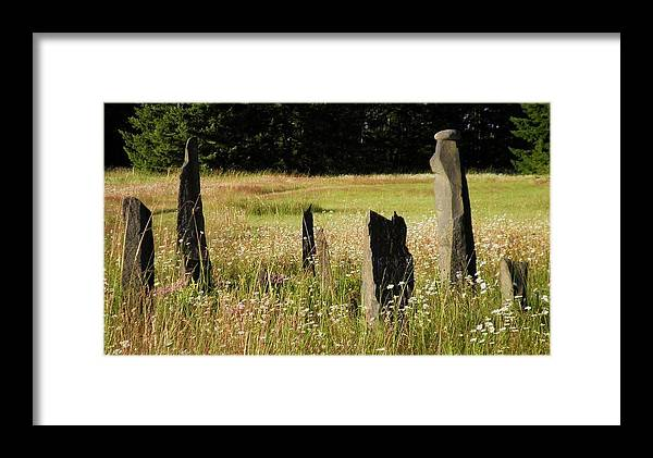 Stones Framed Print featuring the photograph Stones In Summer by Donna Meadows