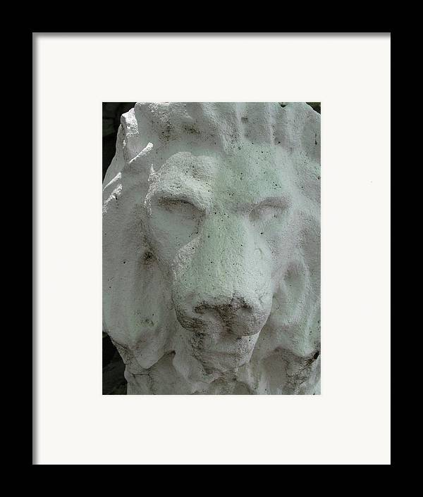 Leo Framed Print featuring the photograph Stonework Leo by Belinda Consten