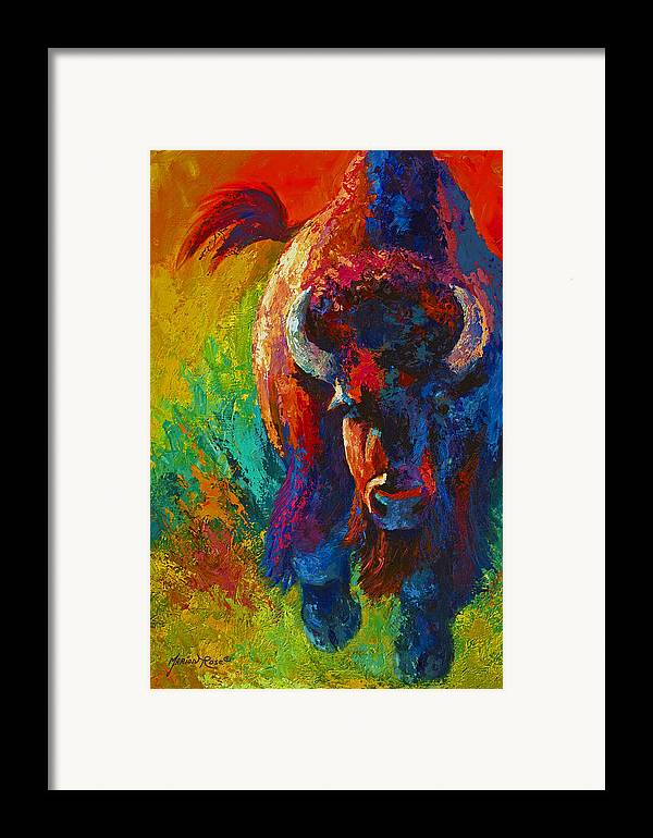 Wildlife Framed Print featuring the painting Straight Forward Introduction - Bison by Marion Rose