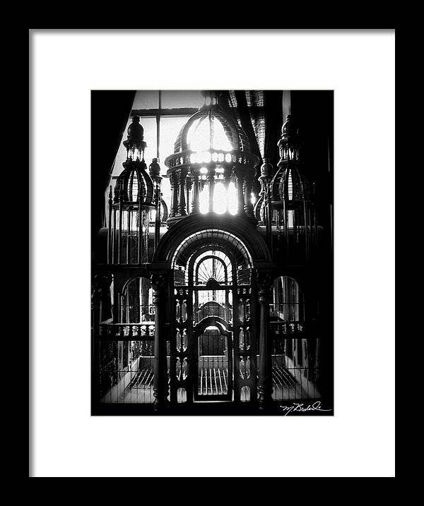 Cage Framed Print featuring the photograph Strange Cage by Melissa Wyatt