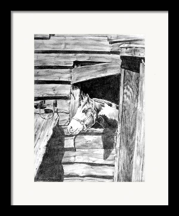 Horses Framed Print featuring the drawing Strawberry by Barbara Widmann