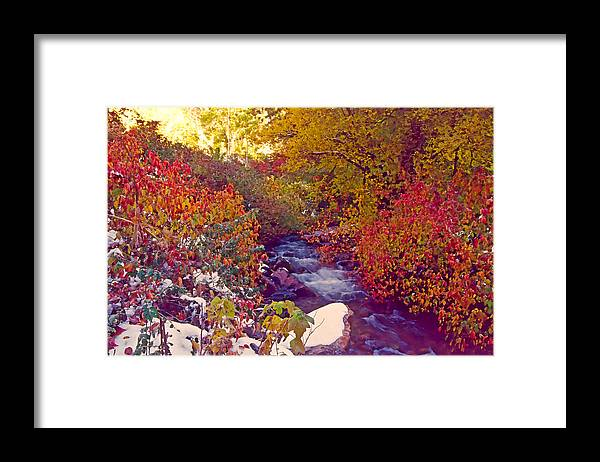 Stream Framed Print featuring the photograph Stream In Autumn by Steve Ohlsen