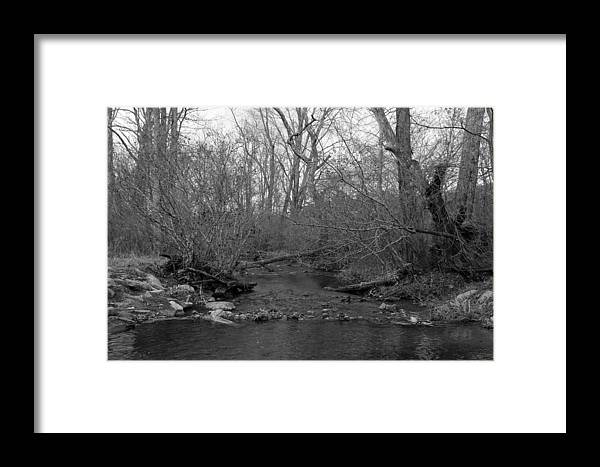 Stream Framed Print featuring the photograph Stream In The Woods by Dwight Cook