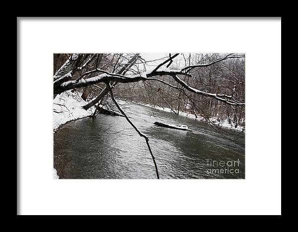 Landscape Framed Print featuring the photograph Stream by Robin Lynne Schwind