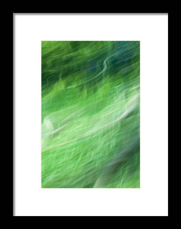 Streaming Framed Print featuring the photograph Streaming Life by Douglas Barnett
