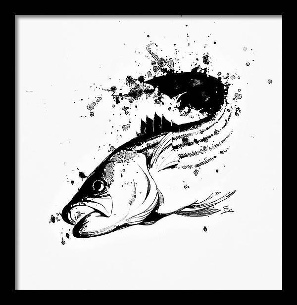 Stripe Bass by Savio Mizzi