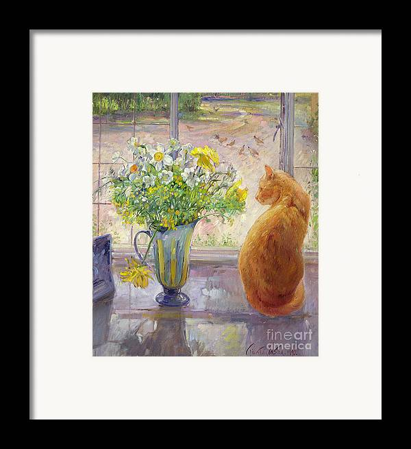 Ginger; Cat; Vase; Narcissi; Chicken; Pheasants Eye; Flower; Flowers ; Window; Open Window; Pheasant Framed Print featuring the painting Striped Jug With Spring Flowers by Timothy Easton
