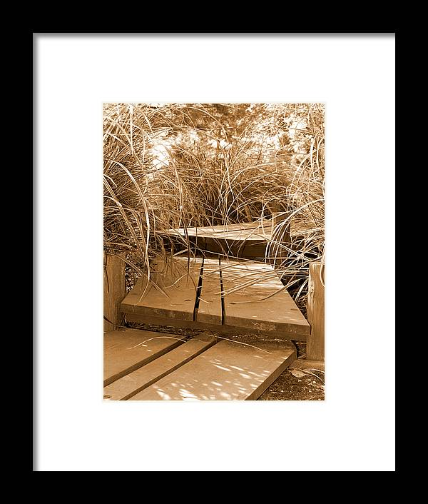 Sepia Framed Print featuring the photograph Stroll Garden Walkway by Audrey Venute