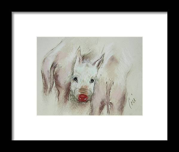 Animal Framed Print featuring the drawing Stuck In The Middle by Cori Solomon