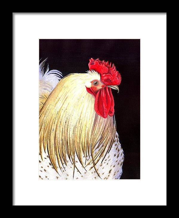 Rooster Framed Print featuring the painting Studdley by Catherine G McElroy