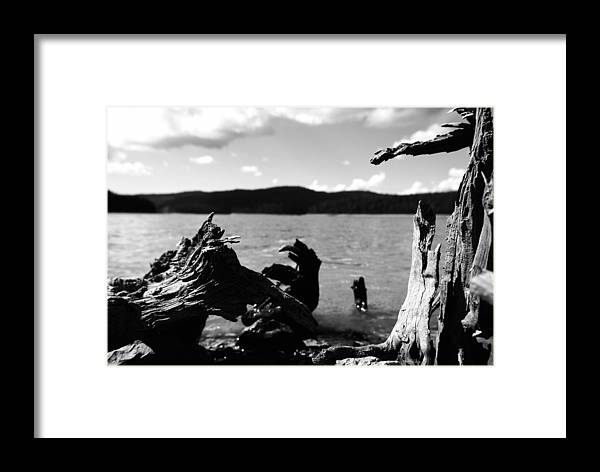 Stump Framed Print featuring the photograph Stump Lake by Tom Melo
