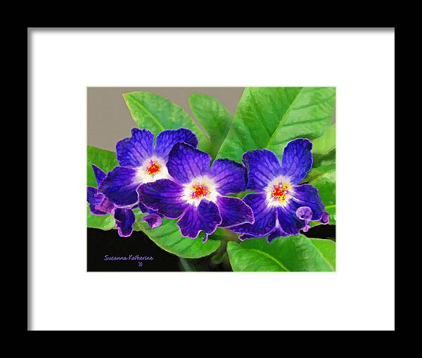 Flowers Framed Print featuring the painting Stunning Blue Flowers by Susanna Katherine