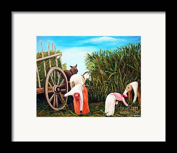 Cuban Art Framed Print featuring the painting Sugarcane Worker 1 by Jose Manuel Abraham