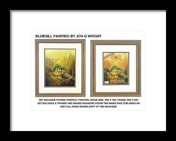 Jon Q Wright Framed Print featuring the painting Summer Bluegill by JQ Licensing