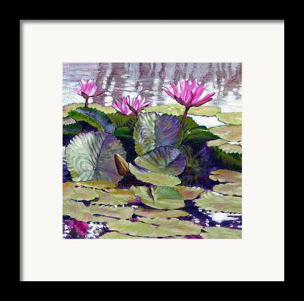 Water Lilies Framed Print featuring the painting Summer Breeze by John Lautermilch