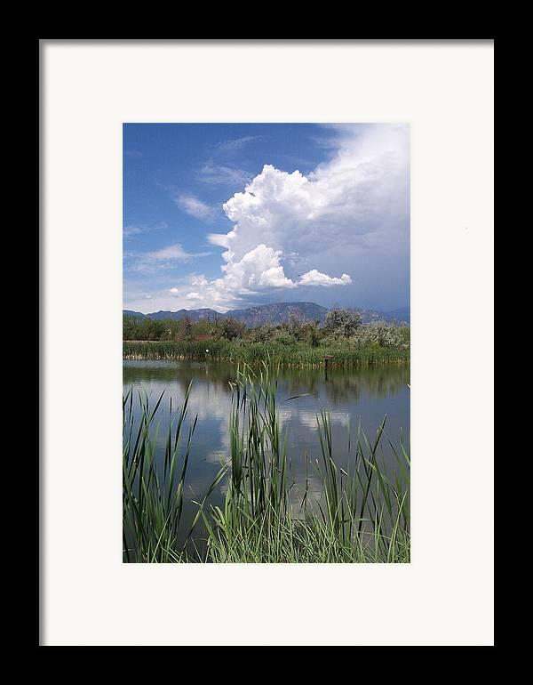 Landscape Framed Print featuring the photograph summer Daze by Sarah Bauer