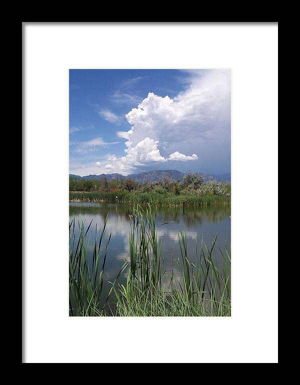 Landscape Framed Print featuring the photograph summer Daze by Sarah Bauer