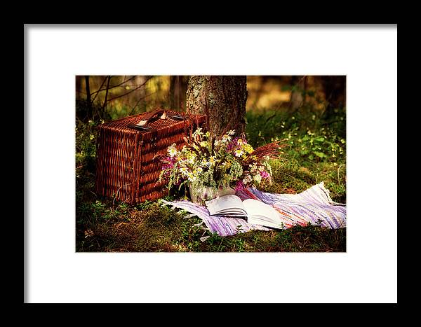 Summer Framed Print featuring the photograph Summer Picnic by Kristine Lejniece