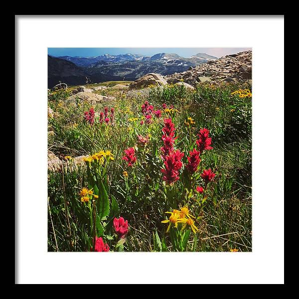 Summer Plateau by Kelly A Wolfe